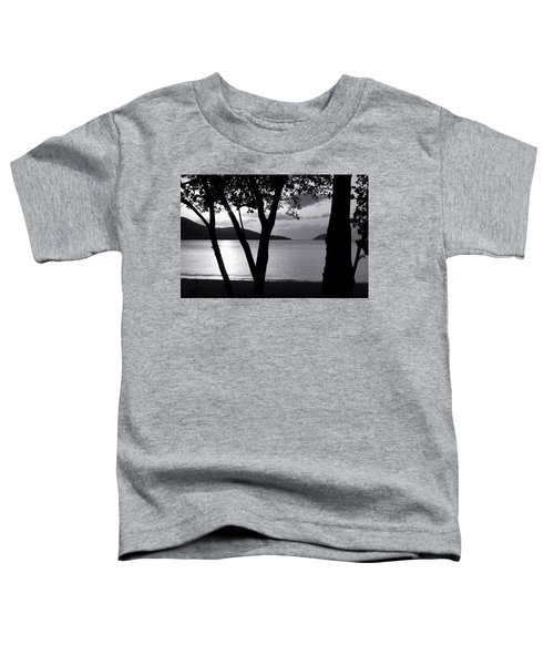 Magens Down Toddler T-Shirt
