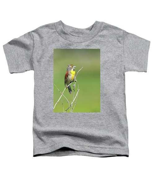 Male Dickcissel Toddler T-Shirt