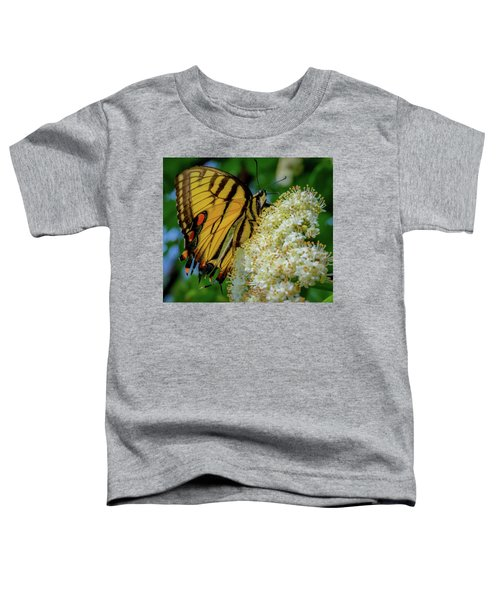 Manassas Butterfly Toddler T-Shirt