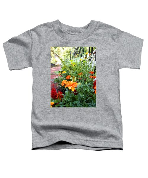 Mary's Walk Way Toddler T-Shirt