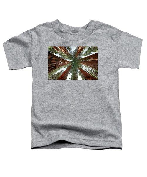 Meet The Giants Toddler T-Shirt
