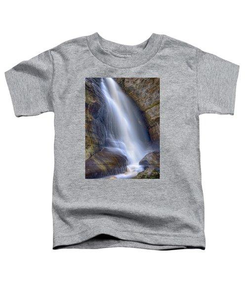 Miners Falls Toddler T-Shirt