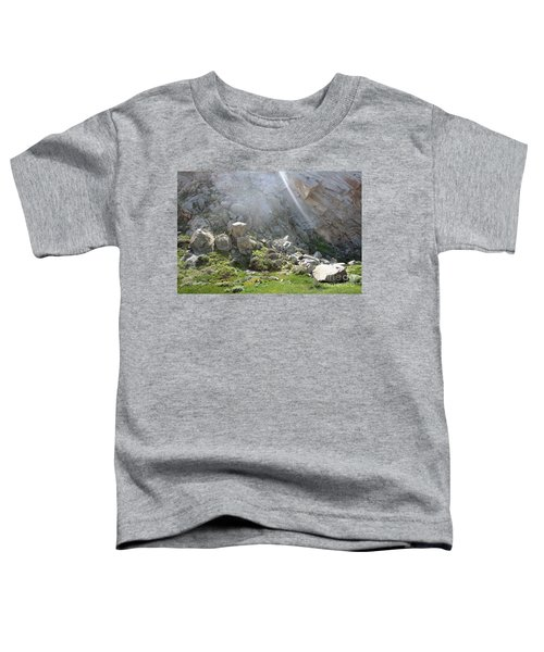 Morro Rock Cluster Toddler T-Shirt