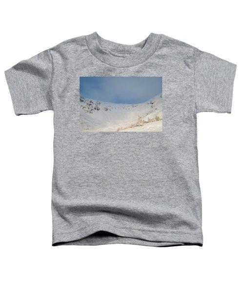 Mountain Light, Tuckerman Ravine Toddler T-Shirt