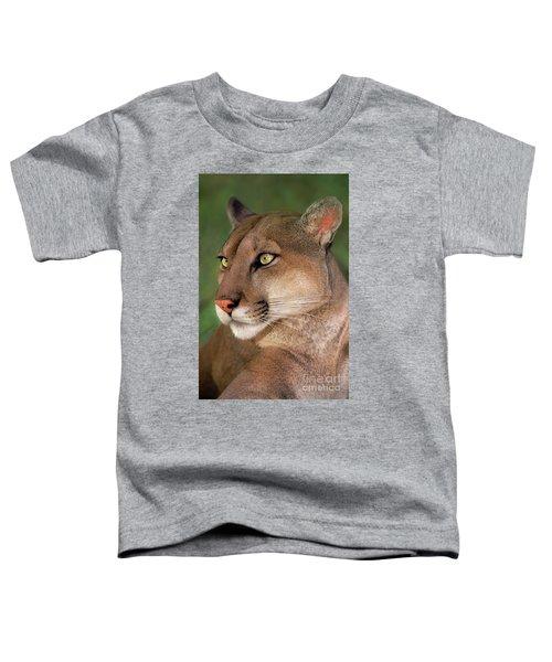 Mountain Lion Portrait Wildlife Rescue Toddler T-Shirt