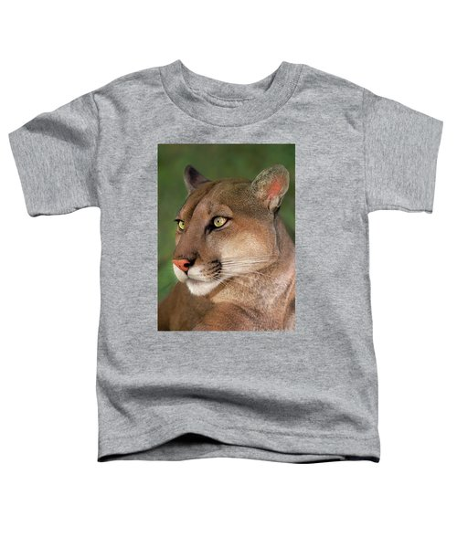 Mountain Lion Portrait Wildlife Rescue Toddler T-Shirt
