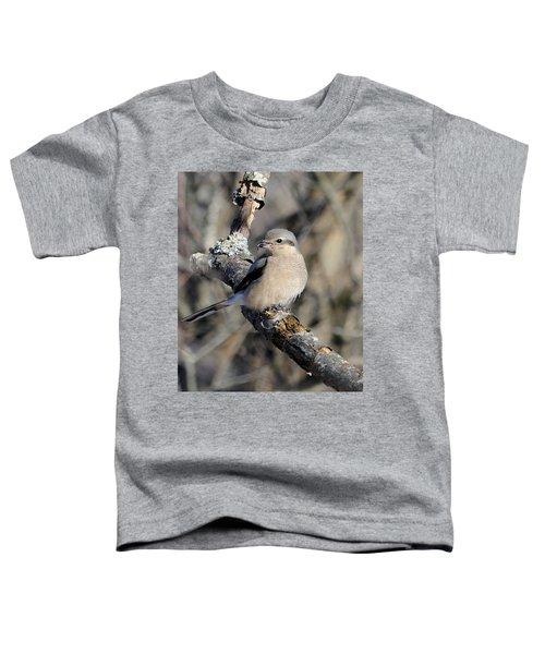Northern Shrike Toddler T-Shirt