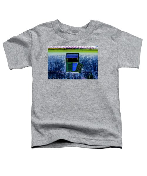 Old Window 3 Toddler T-Shirt