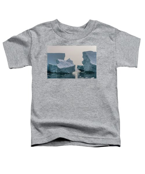 One Cube Or Two Toddler T-Shirt