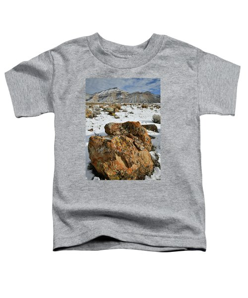 Ornate Colorful Boulders In The Book Cliffs Toddler T-Shirt