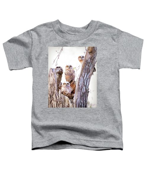Owl Trio Standing Guard Toddler T-Shirt