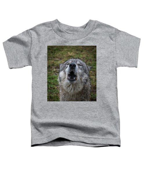 Owwwwwwwwwww Toddler T-Shirt