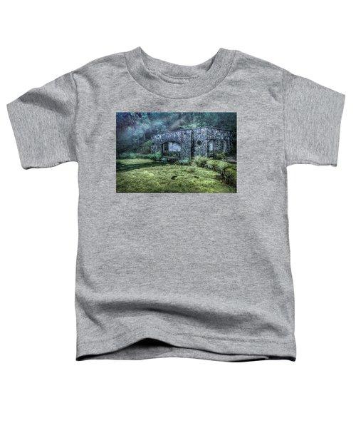 Paradise Springs Toddler T-Shirt