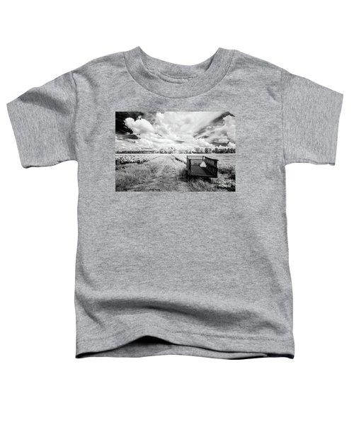 Pee Dee Tobacco Field B-w Toddler T-Shirt