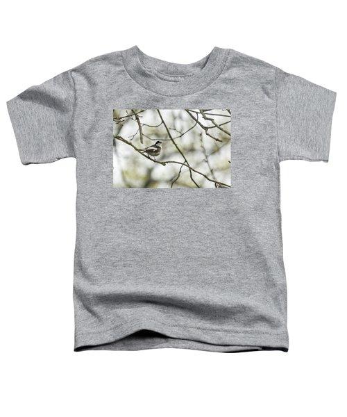 Pied Flycatcher Toddler T-Shirt