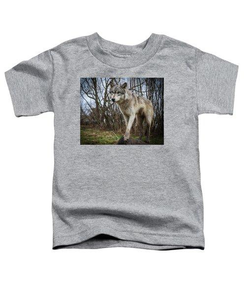 Posing Toddler T-Shirt