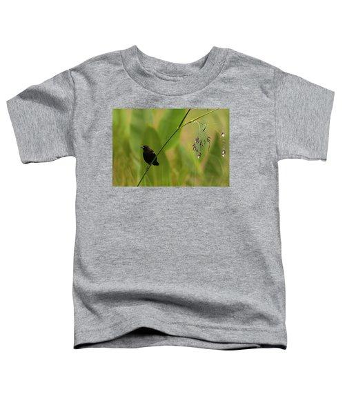 Red-winged Blackbird On Alligator Flag Toddler T-Shirt