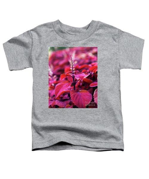 Reds Toddler T-Shirt