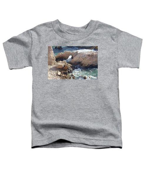 Rocks At Montana De Oro Toddler T-Shirt