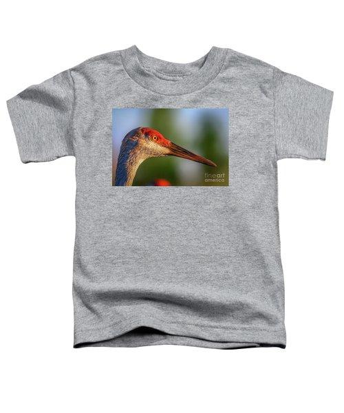 Sandhill Sunlight Portrait Toddler T-Shirt