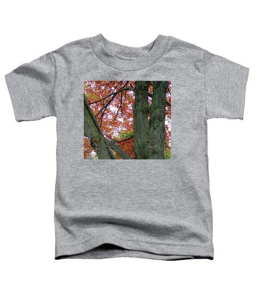 Seeing Autumn Toddler T-Shirt