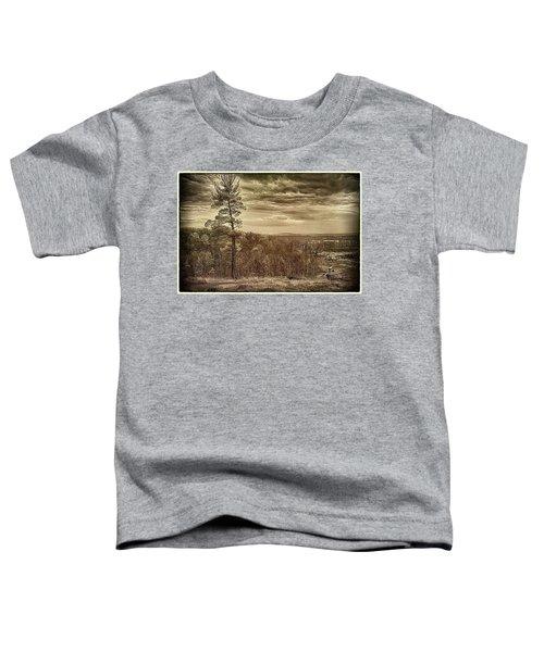 Sepia Sunset Toddler T-Shirt