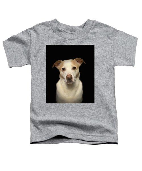 Seriously Snofie Studio Shot Toddler T-Shirt