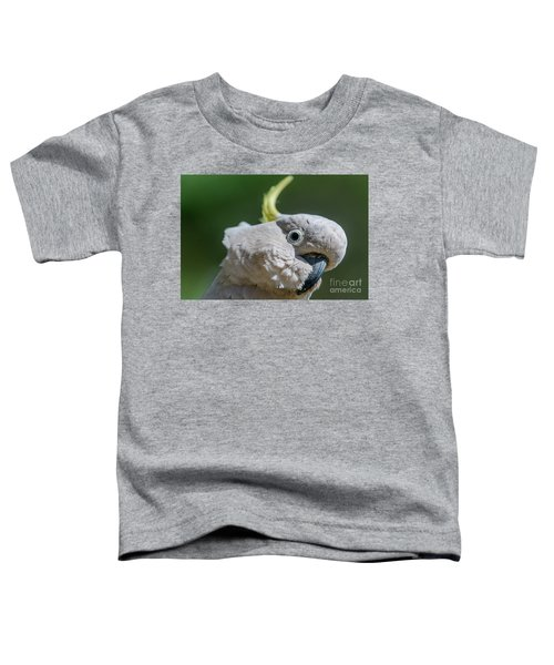 Seriously? Toddler T-Shirt
