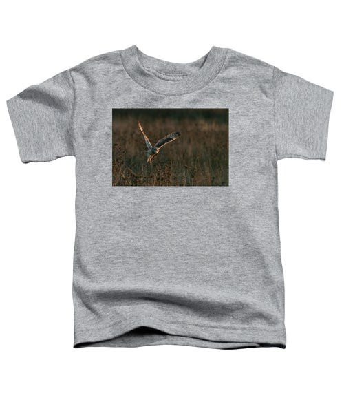 Short Eared Owl Liftoff Toddler T-Shirt