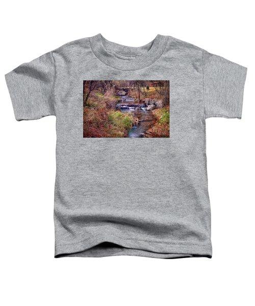 Sinoquippie Run Toddler T-Shirt