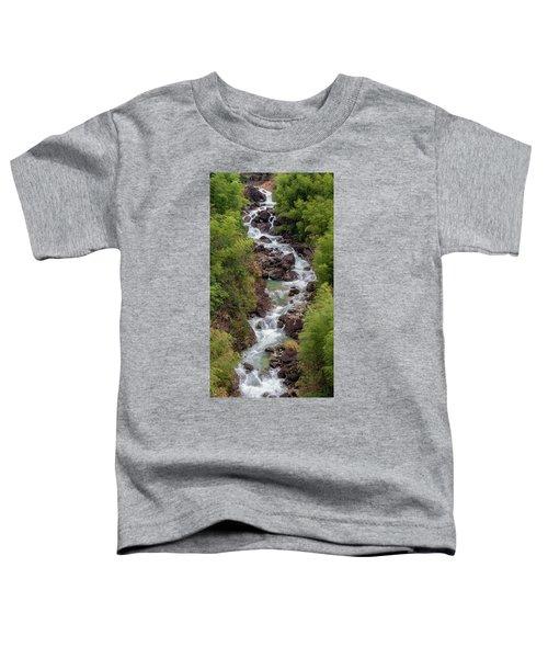 Small Cascade 1x2 Vertical Toddler T-Shirt
