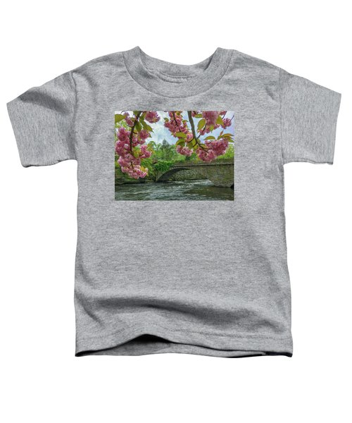 Spring Garden On The Bridge  Toddler T-Shirt