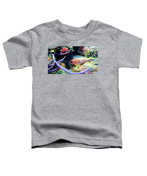 Squirrel Fish Toddler T-Shirt