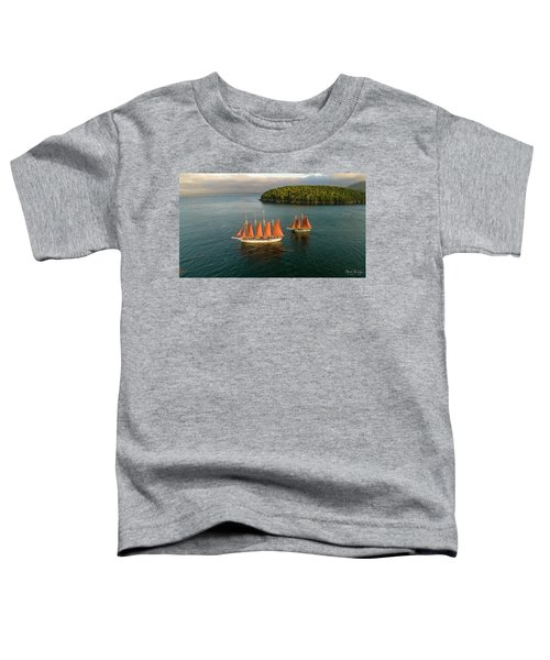 Stay The Course  Toddler T-Shirt
