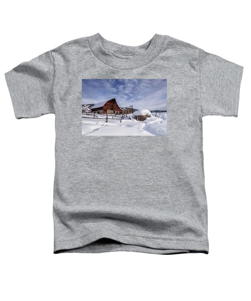 Steamboat Springs Toddler T-Shirt