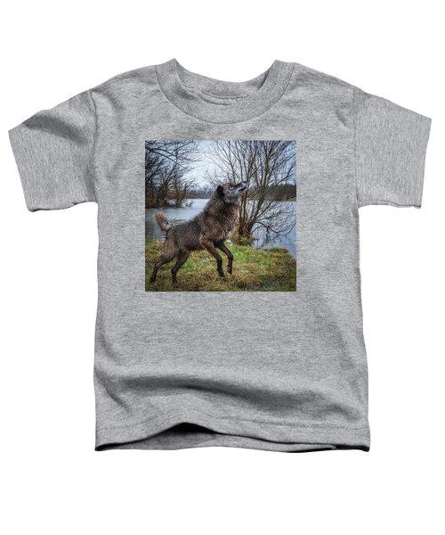 Stick Get It Toddler T-Shirt