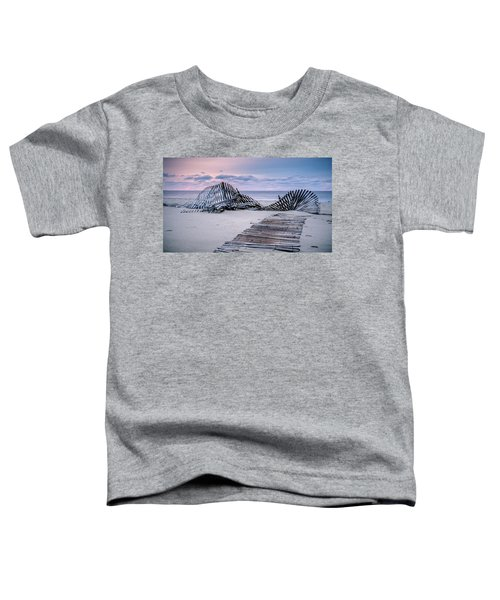 Storm Fence Sunrise Toddler T-Shirt