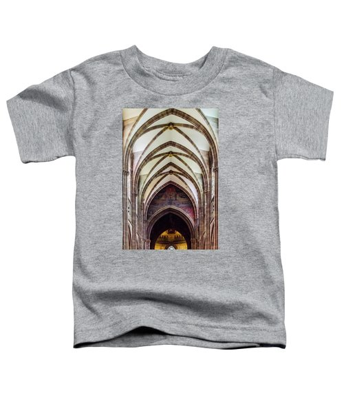 Strasbourg Cathedral - 2 Toddler T-Shirt