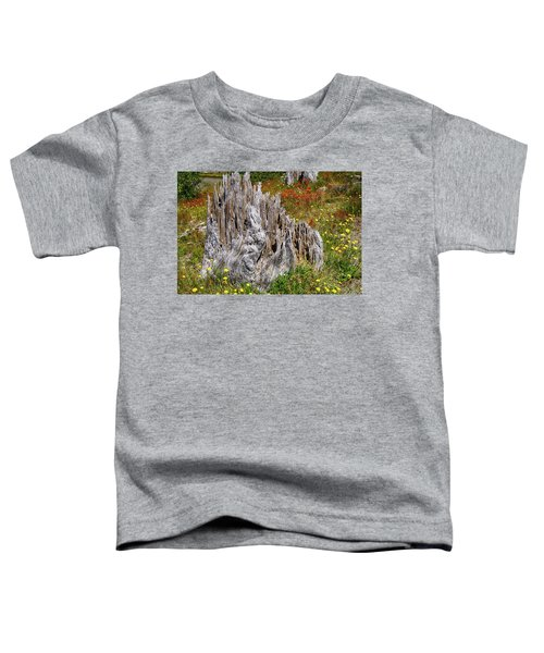 Stumps Of Trees Shattered In The 1980 Eruption Toddler T-Shirt