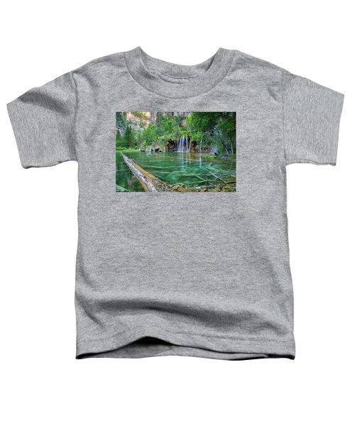 Submerged Log, Hanging Lake Colorado Toddler T-Shirt