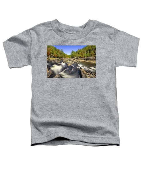 Sweetwater Creek Toddler T-Shirt