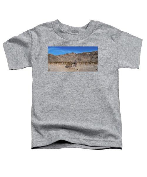 Teakettle Junction I Toddler T-Shirt
