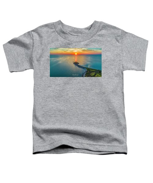The Last Ray Toddler T-Shirt
