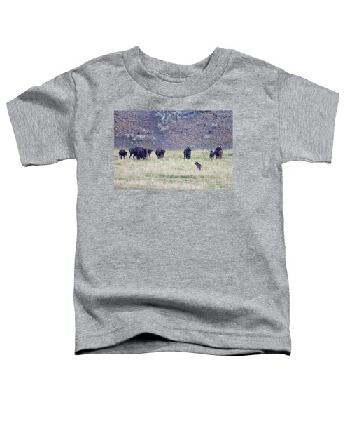 The Naming Of Spitfire Toddler T-Shirt