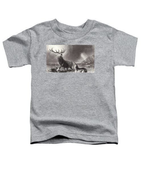 The Stag At Bay Toddler T-Shirt