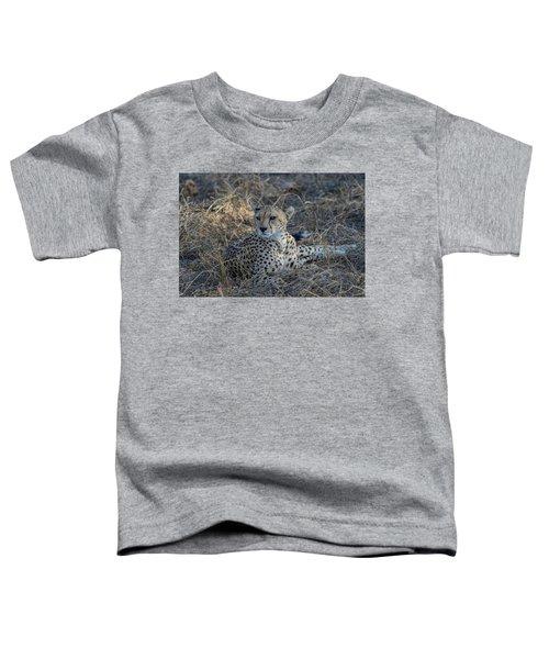 Cheetah In Repose Toddler T-Shirt