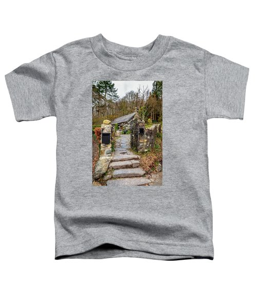 The Ugly House Snowdonia Toddler T-Shirt