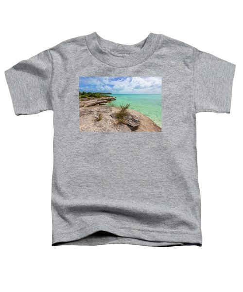 Tranquil Sea Toddler T-Shirt