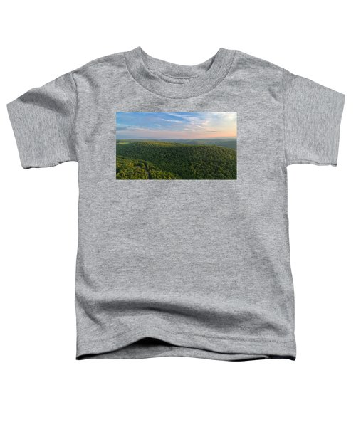 Upstate New York  Toddler T-Shirt