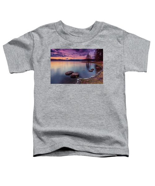 Violet Dusk Toddler T-Shirt